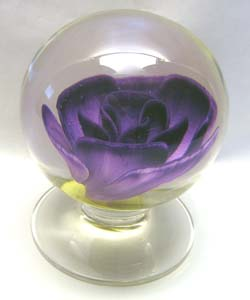 Purple Rose $600.00