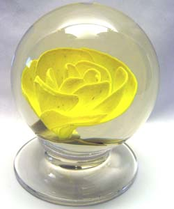 Yellow Rose $600.00